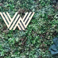 WIS green wall